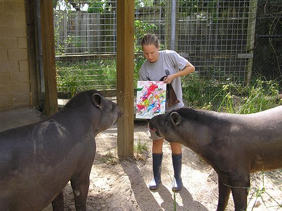 Tapirs Peintres