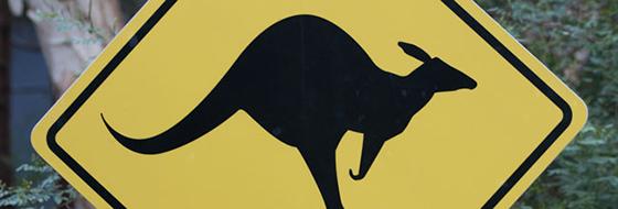animaux-australiens